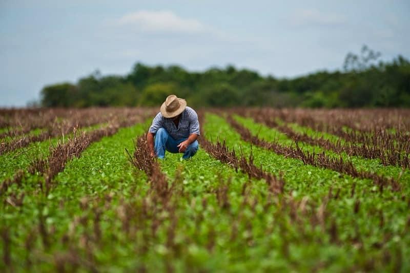 """Daniel Buda: """"România trebuie să evolueze spre o agricultură modernă și performantă în fața schimbărilor climatice!"""""""